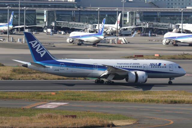 プルシアンブルーさんが、羽田空港で撮影した全日空 787-8 Dreamlinerの航空フォト(飛行機 写真・画像)