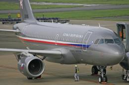 tsubameさんが、福岡空港で撮影したチェコ空軍 A319-115CJの航空フォト(飛行機 写真・画像)