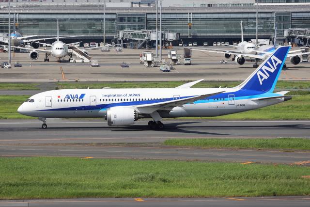 sumihan_2010さんが、羽田空港で撮影した全日空 787-8 Dreamlinerの航空フォト(飛行機 写真・画像)