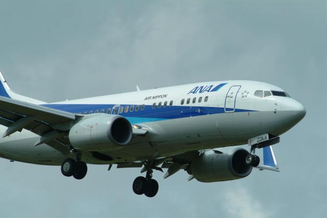 どらネコ★きんぐさんが、成田国際空港で撮影した全日空 737-781の航空フォト(飛行機 写真・画像)