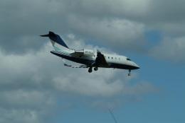どらネコ★きんぐさんが、成田国際空港で撮影した不明 CL-600-2B16 Challenger 605の航空フォト(飛行機 写真・画像)