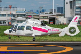 Chofu Spotter Ariaさんが、東京ヘリポートで撮影した東邦航空 AS365N2 Dauphin 2の航空フォト(飛行機 写真・画像)