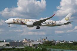 @たかひろさんが、伊丹空港で撮影した日本航空 A350-941の航空フォト(飛行機 写真・画像)