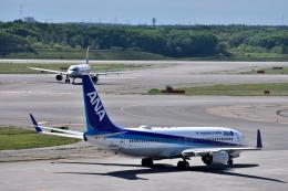 Take51さんが、新千歳空港で撮影した全日空 737-881の航空フォト(飛行機 写真・画像)