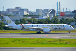 taiki17さんが、伊丹空港で撮影した日本航空 A350-941の航空フォト(飛行機 写真・画像)