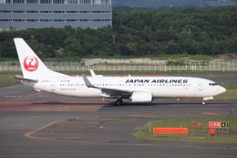 天王寺王子さんが、新千歳空港で撮影した日本航空 737-846の航空フォト(飛行機 写真・画像)