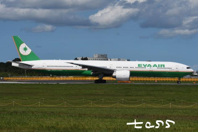 tassさんが、成田国際空港で撮影したエバー航空 777-36N/ERの航空フォト(飛行機 写真・画像)
