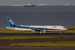 ゆーすきんさんが、羽田空港で撮影した全日空 A321-272Nの航空フォト(飛行機 写真・画像)