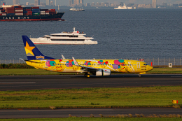 ゆーすきんさんが、羽田空港で撮影したスカイマーク 737-8ALの航空フォト(飛行機 写真・画像)