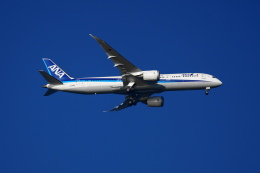 senbaさんが、羽田空港で撮影した全日空 787-9の航空フォト(飛行機 写真・画像)