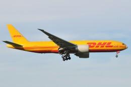 fly A340さんが、成田国際空港で撮影したサザン・エア 777-Fの航空フォト(飛行機 写真・画像)