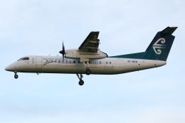 kinsanさんが、クライストチャーチ国際空港で撮影したエア・ネルソン DHC-8-311Q Dash 8の航空フォト(飛行機 写真・画像)