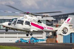 T spotterさんが、東京ヘリポートで撮影した東邦航空 AS365N2 Dauphin 2の航空フォト(飛行機 写真・画像)