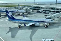 M.airphotoさんが、那覇空港で撮影した全日空 737-881の航空フォト(飛行機 写真・画像)