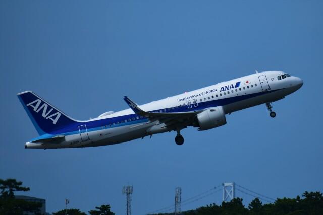 Ryo-TKSさんが、徳島空港で撮影した全日空 A320-271Nの航空フォト(飛行機 写真・画像)