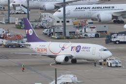 天王寺王子さんが、成田国際空港で撮影したYTOカーゴ・エアラインズ 737-36Q(SF)の航空フォト(飛行機 写真・画像)