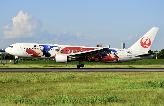 蒼くまさんが、伊丹空港で撮影した日本航空 767-346/ERの航空フォト(飛行機 写真・画像)