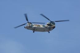 神宮寺ももさんが、福岡空港で撮影した航空自衛隊 CH-47J/LRの航空フォト(飛行機 写真・画像)