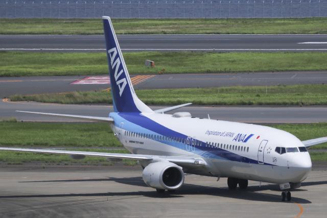 Sharp Fukudaさんが、羽田空港で撮影した全日空 737-8ALの航空フォト(飛行機 写真・画像)