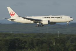 Sharp Fukudaさんが、新千歳空港で撮影した日本航空 777-246/ERの航空フォト(飛行機 写真・画像)