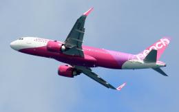 CL&CLさんが、奄美空港で撮影したピーチ A320-251Nの航空フォト(飛行機 写真・画像)