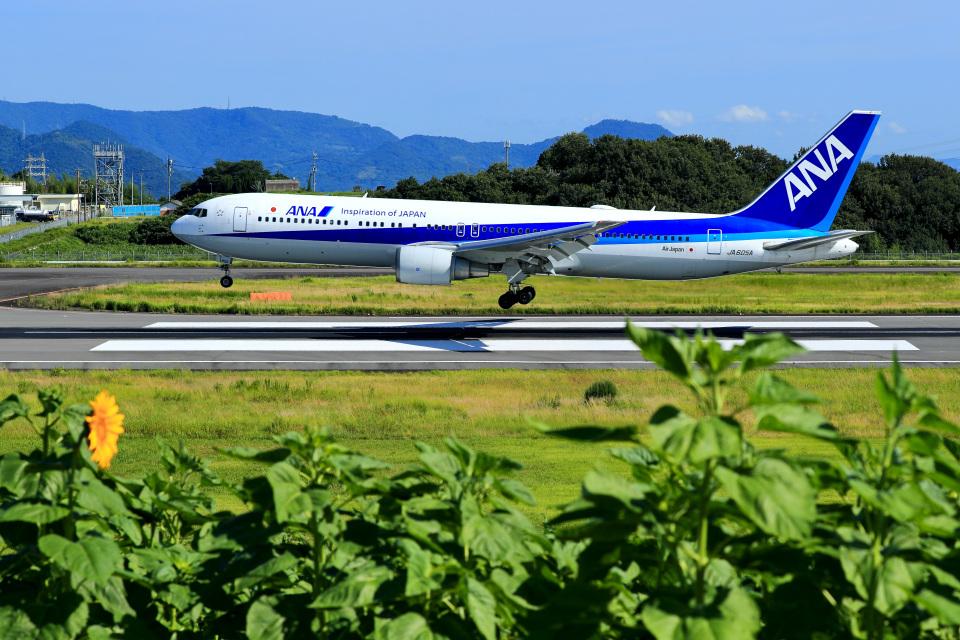 くれないさんの全日空 Boeing 767-300 (JA605A) 航空フォト