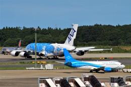 Rsaさんが、成田国際空港で撮影したナウル・エアラインズ 737-319の航空フォト(飛行機 写真・画像)