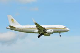 アルビレオさんが、成田国際空港で撮影したスカイ・プライム A319-115CJの航空フォト(飛行機 写真・画像)