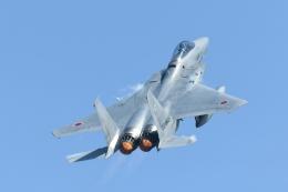 博タンさんが、小松空港で撮影した航空自衛隊 F-15J Eagleの航空フォト(飛行機 写真・画像)