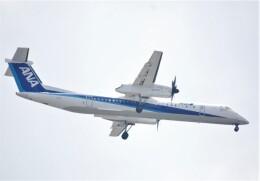 takikoki50000さんが、伊丹空港で撮影したANAウイングス DHC-8-402Q Dash 8の航空フォト(飛行機 写真・画像)