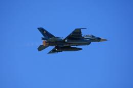 tsubameさんが、築城基地で撮影した航空自衛隊 F-2Aの航空フォト(飛行機 写真・画像)