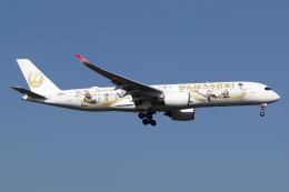 Echo-Kiloさんが、新千歳空港で撮影した日本航空 A350-941の航空フォト(飛行機 写真・画像)
