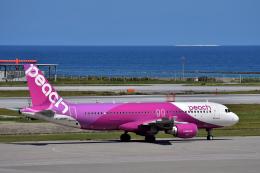 Take51さんが、那覇空港で撮影したピーチ A320-214の航空フォト(飛行機 写真・画像)