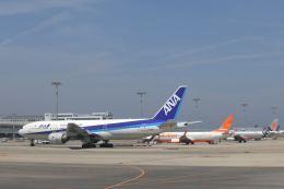 Take51さんが、関西国際空港で撮影した全日空 777-281の航空フォト(飛行機 写真・画像)