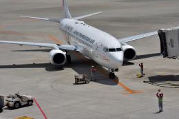 Take51さんが、那覇空港で撮影した日本トランスオーシャン航空 737-8Q3の航空フォト(飛行機 写真・画像)