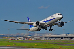 Souma2005さんが、羽田空港で撮影した全日空 787-9の航空フォト(飛行機 写真・画像)
