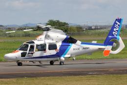 やまけんさんが、仙台空港で撮影したオールニッポンヘリコプター AS365N3 Dauphin 2の航空フォト(飛行機 写真・画像)