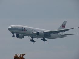 Naoxさんが、羽田空港で撮影した日本航空 777-246の航空フォト(飛行機 写真・画像)
