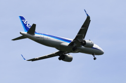 TAK_HND_NRTさんが、高松空港で撮影した全日空 A320-271Nの航空フォト(飛行機 写真・画像)