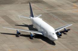planetさんが、中部国際空港で撮影したボーイング 747-4H6(LCF) Dreamlifterの航空フォト(飛行機 写真・画像)