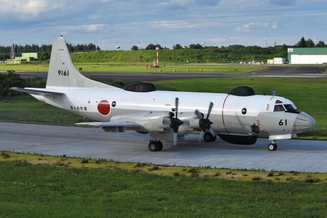 デルタおA330さんが、入間飛行場で撮影した海上自衛隊 UP-3Dの航空フォト(飛行機 写真・画像)
