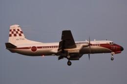 B747‐400さんが、入間飛行場で撮影した航空自衛隊 YS-11-103FCの航空フォト(飛行機 写真・画像)