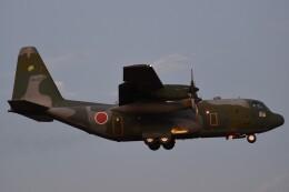 B747‐400さんが、入間飛行場で撮影した航空自衛隊 C-130H Herculesの航空フォト(飛行機 写真・画像)