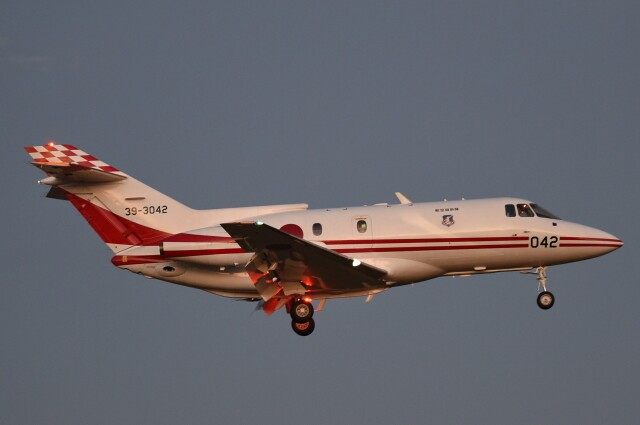 B747‐400さんが、入間飛行場で撮影した航空自衛隊 U-125 (BAe-125-800FI)の航空フォト(飛行機 写真・画像)