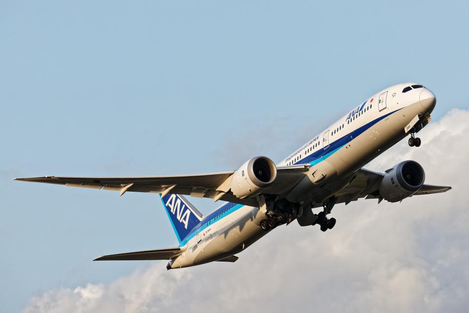 SGR RT 改さんの全日空 Boeing 787-9 (JA886A) 航空フォト