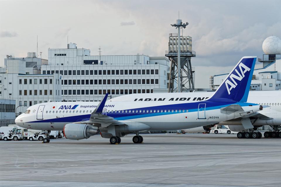 SGR RT 改さんの全日空 Airbus A320 (JA03VA) 航空フォト
