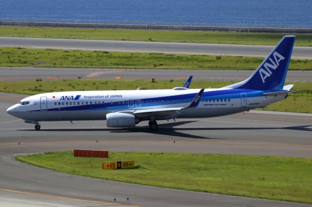▲®さんが、中部国際空港で撮影した全日空 737-8ALの航空フォト(飛行機 写真・画像)