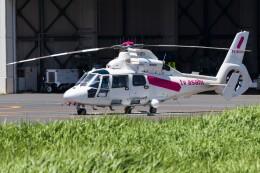 walker2000さんが、東京ヘリポートで撮影した東邦航空 AS365N2 Dauphin 2の航空フォト(飛行機 写真・画像)