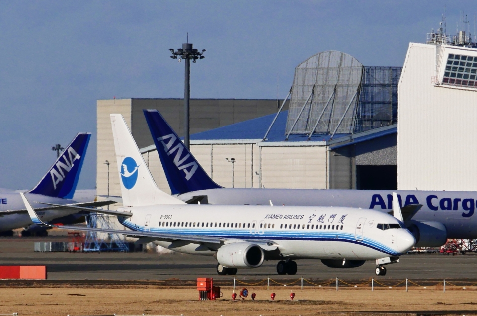kaeru6006さんの厦門航空 Boeing 737-800 (B-5563) 航空フォト