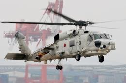 TA27さんが、小松島航空基地で撮影した海上自衛隊 SH-60Jの航空フォト(飛行機 写真・画像)